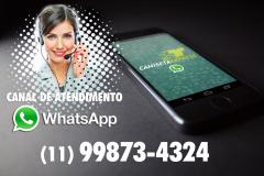 camex_whatsapp_camex-20